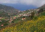 Campanario Madeira